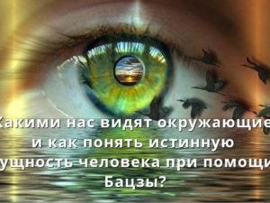 Какими нас видят окружающие и как понять истинную сущность человека  при помощи Бацзы?