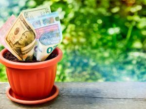 Как привлекать деньги. Чаша богатства — куда ставить