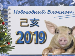 Новогодний блокнот 2019. Куда поставить елку