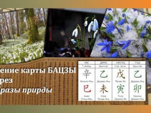 Чтение карты Бацзы через Образы природы